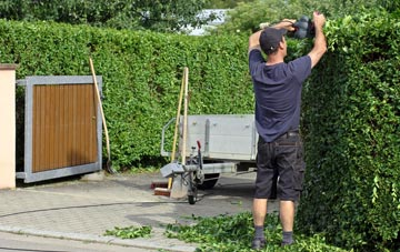 professional Westminster hedge cutting services