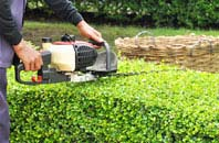 Westminster hedge trimming services