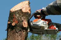 free Westminster tree removal quotes