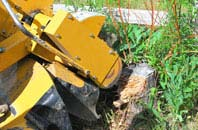 Westminster tree stump grinding services